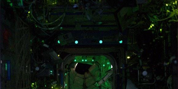 EEGS on orbit